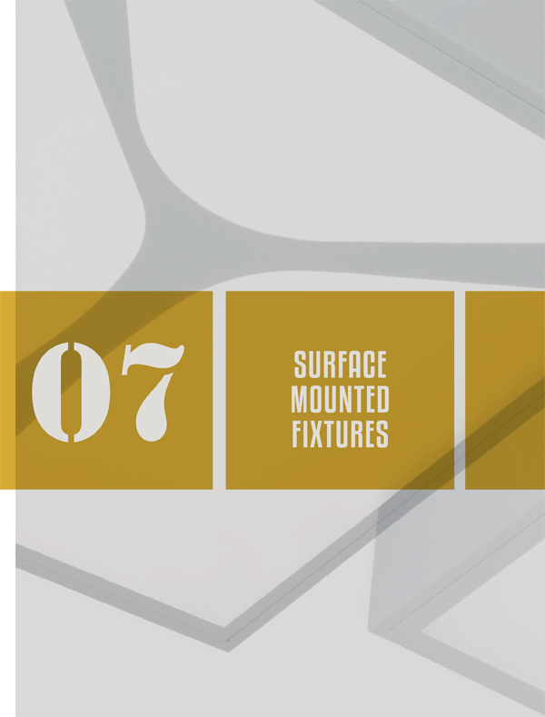 Surface Mounted Fixtures